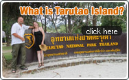 What is Tarutao Island